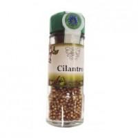 Cilantro en Grano 25 Gr (Biocop)