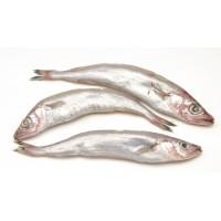 Pescadilla de Ración Nacional, Piezas de 300 Gr Aprox