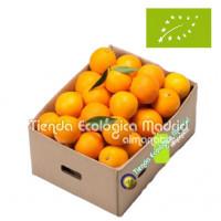 Naranjas de Zumo, Caja 10 Kgs (Valencia)