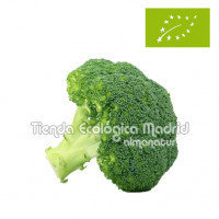 Brócoli, el Kg (Navarra)