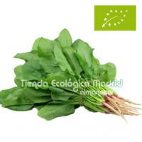 Espinacas Frescas, en Bolsa...