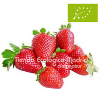 "Fresas ""Silvestres"", Bandeja 400 Gr (Navarra)"