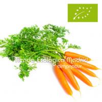 Zanahorias en Rama, Manojo 500/600 Gr (Navarra)