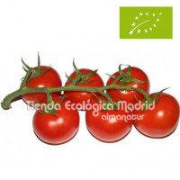 Tomates en Rama, el Kg (Almería)