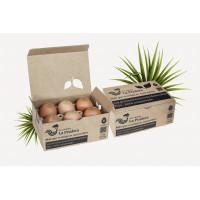 Huevos Ecológicos 1/2 Docena (La Pradera)