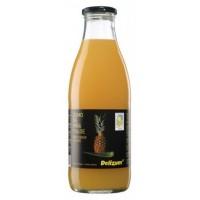 Zumo de Piña y Aloe 1 L (Delizum)